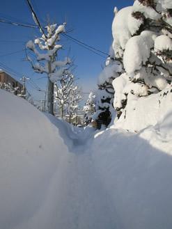 せま〜い歩道