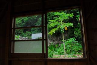 沖縄 養生や 部屋から.jpg