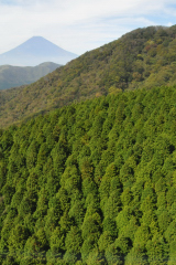 駒ケ岳ロープウェーの中からの富士山