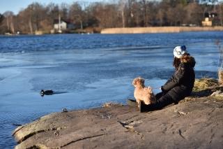 2014 sweden スウェーデン 旅 冬休み 大自然 散歩