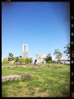 朝ピクニック シロツメクサ 象の鼻公園