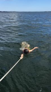 2017 夏 スウェーデン クルージング アーキペラゴ archipelago リンネット LINNET バルト海