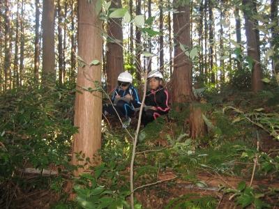森の様子を記録