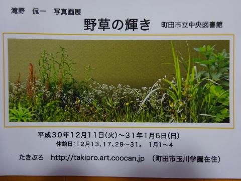 DSC02110 (2).JPG