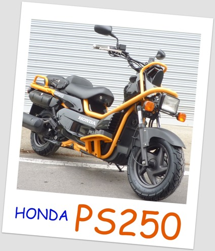 PS250。
