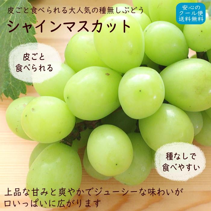 フルーツギフトなど贈答用にも最適なぶどうの女王・シャインマスカットの通販です。種あり、種無しの巨峰葡萄を全国送料無料の通販でお届けします。