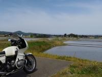 水田風景2