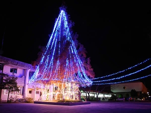 2008年萩市役所 クリスマスイルミネーション