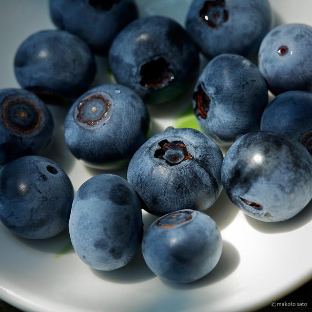 庭で穫れたブルーベリー