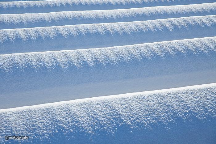雪積ビニールハウス