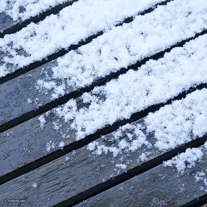 雨と雪の境目