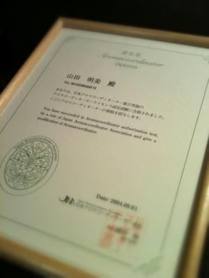 jaa_diploma