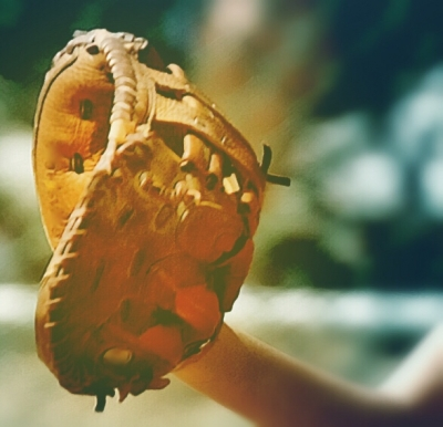 catchers mitt original image from pixabay