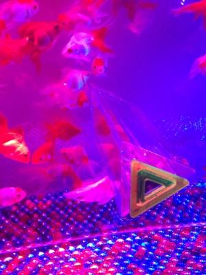 金魚万華鏡