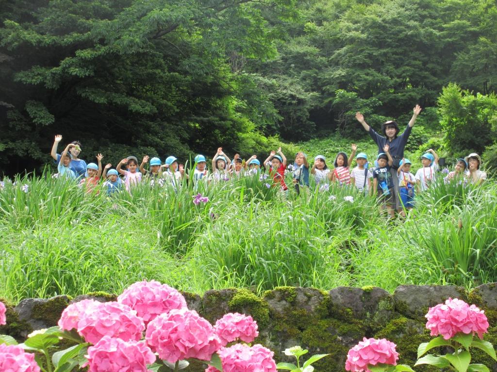 菖蒲園お散歩