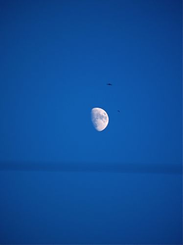窓からみた月