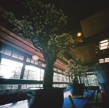 慶雲館一階