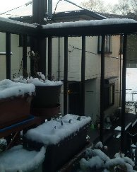 20100202雪03