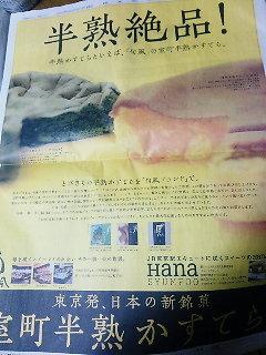 20100514半熟カステラ新聞