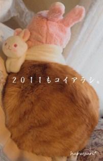2011年も良い年になれ★