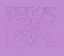 bulueberry_3.jpg
