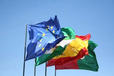 連合旗・州旗・国旗・県旗
