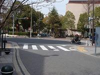 駅前信号-兵庫県伊丹市整体カイロプラクティック院