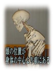 猫背ほね-兵庫県伊丹市整体カイロプラクティック