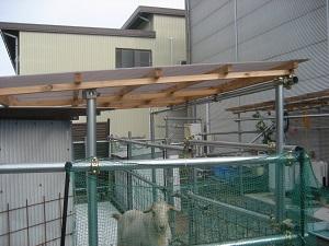 ヤギ小屋の屋根