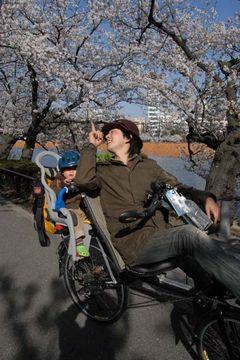 080401花見サイクリング