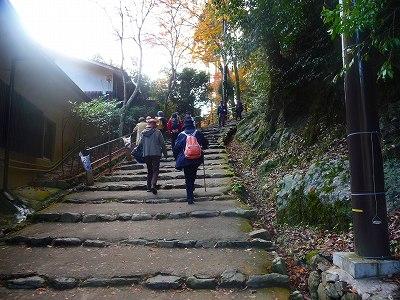 いきなり登り階段が始まります。