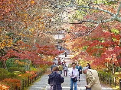 紅葉で有名な小倉山にある訳が分かります。