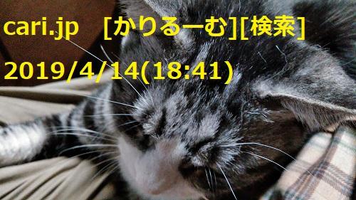 1904141841KIMG0461w500.jpg