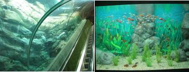 上海水族館