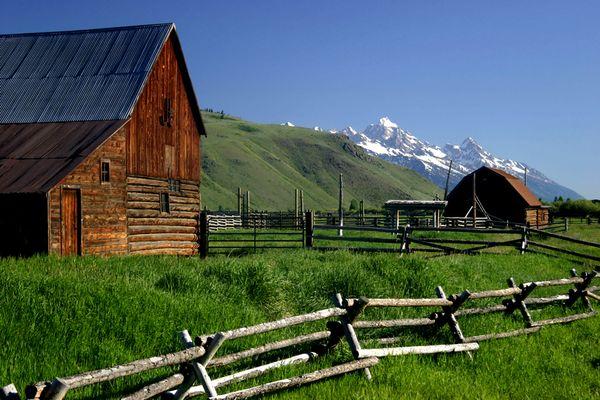 ranch (5).jpg