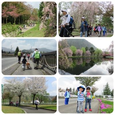 桜ウォーク風景