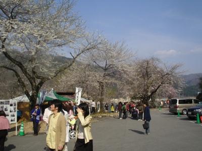 荘川桜駐車場の様子