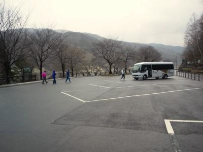 平成23年4月19日の荘川桜
