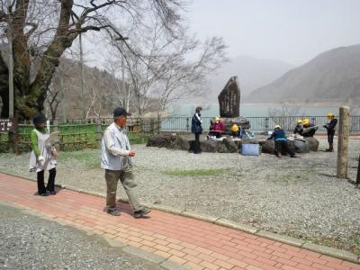 平成23年5月2日の荘川桜で写生している生徒たち