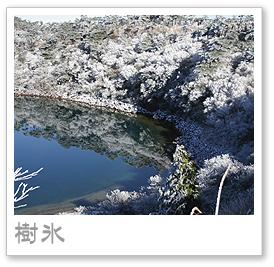 えびの高原の樹氷