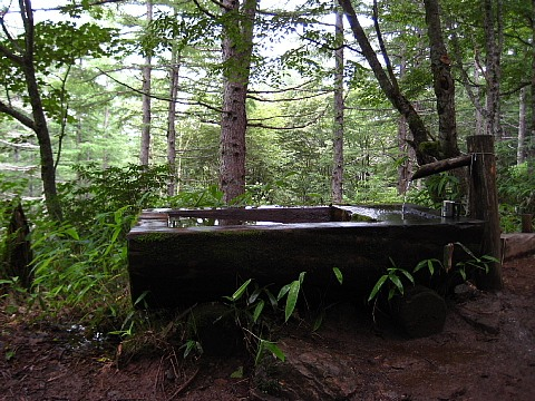 池山山荘近くの水槽