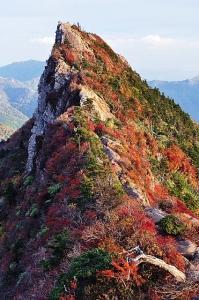 天狗岳の紅葉