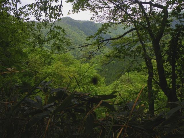 呑谷と内尾谷の間の峠
