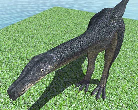恐竜2008.5.28
