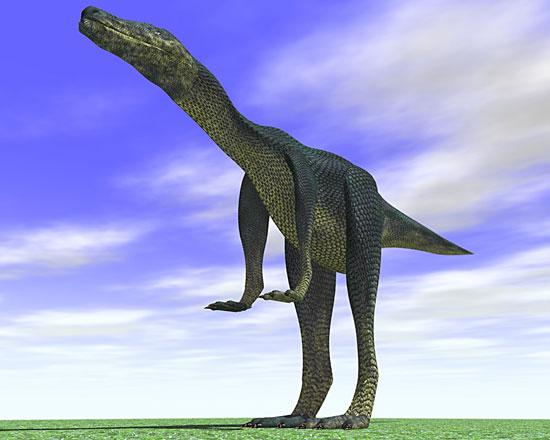恐竜2008.5.31