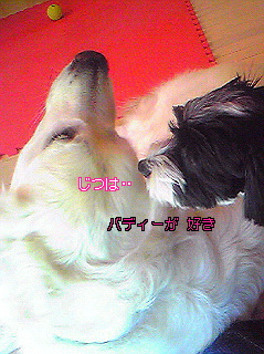 Image987.jpg
