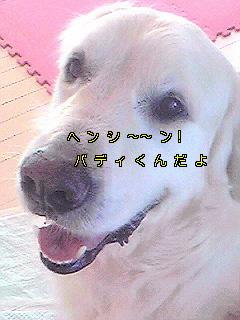 Image820.jpg