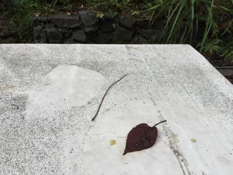 自宅の庭のテーブルに積もった阿蘇の火山灰
