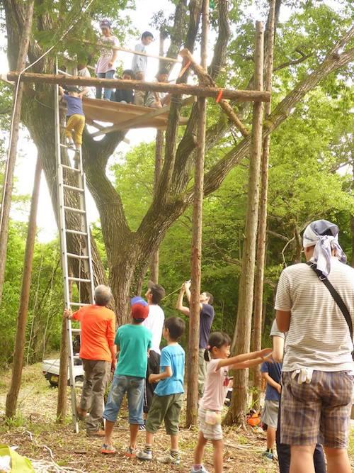 大分エコクラブが制作中のツリーハウス