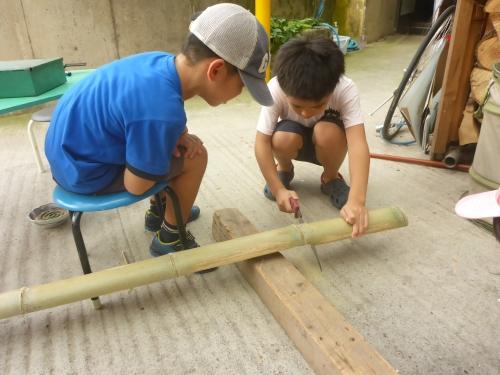 竹をノコで切り出す